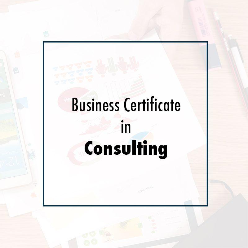 Certificate In Consulting Csea Institute